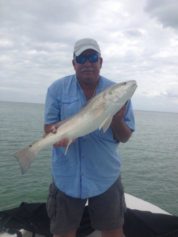 Captiva Redfish