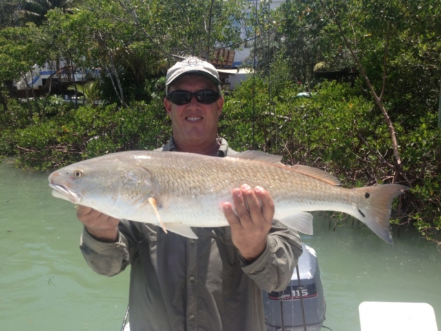 North Captiva Redfish Guide