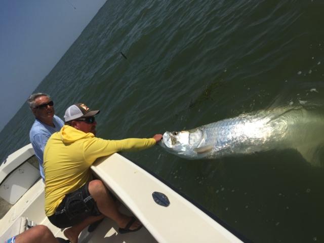Captiva Tarpon Fishing