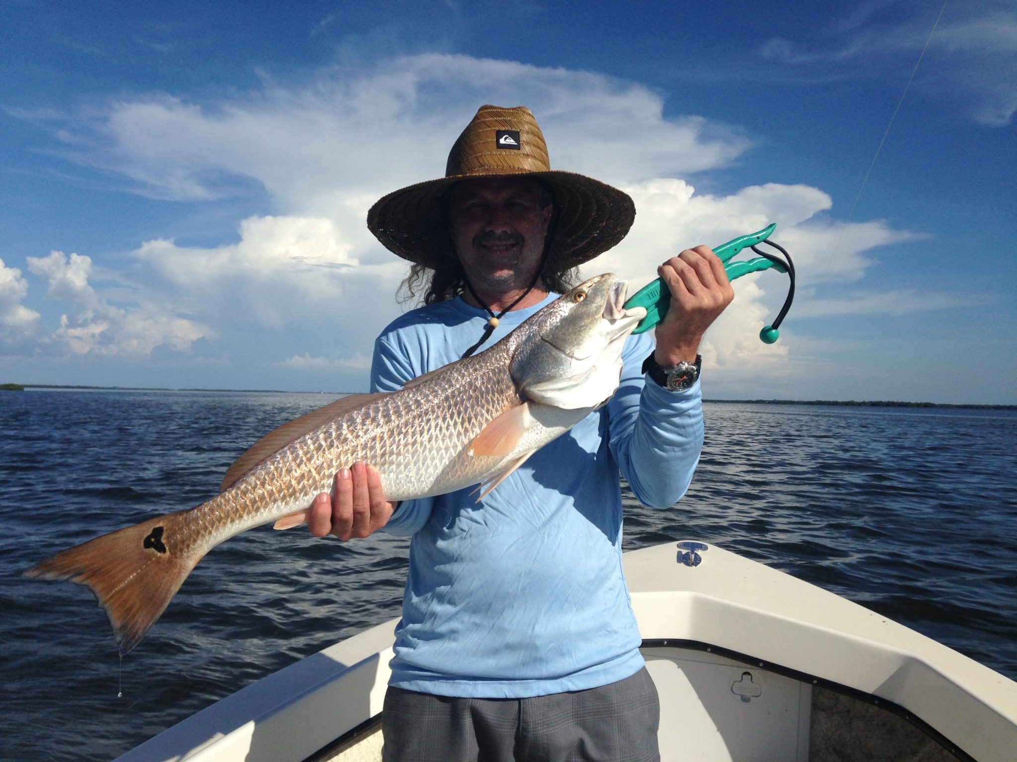 Pine Island Sound Redfish