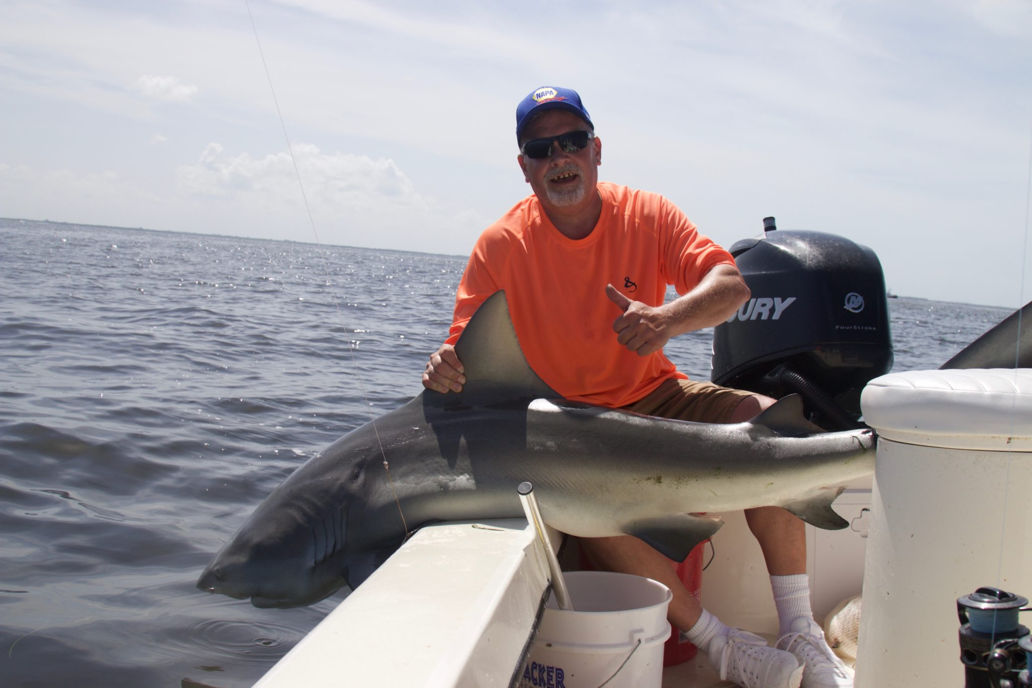 Captiva Shark Fishing